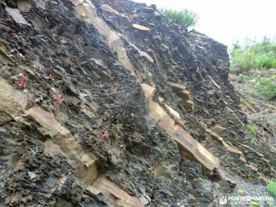 Montaña Palentina;Fuente Cobre;Tosande; subida al moncayo la mariña lucense monasterios de navarra